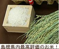 島根県内最高評価のお米!